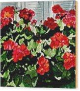 Savannah Window Box Wood Print