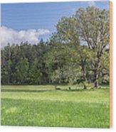 Save My Tree Wood Print