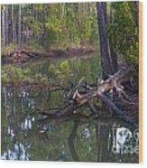 Save The Marsh Wood Print