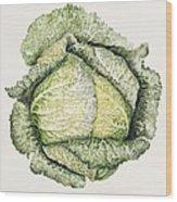 Savoy Cabbage  Wood Print