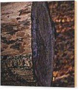 Sawed Logg Wood Print
