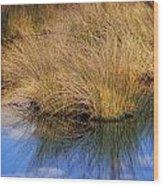 Sawgrass Wood Print