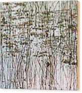 Sawgrass Swamp Panorama Wood Print