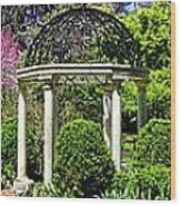 Sayen Garden Dream Wood Print