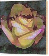 Scanned Rose Water Color Wood Print