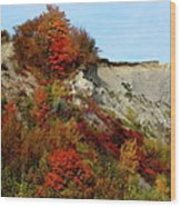 Scarborough Bluffs In Colour Wood Print
