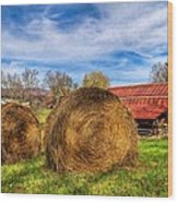 Scarecrow's Dream Wood Print by Debra and Dave Vanderlaan