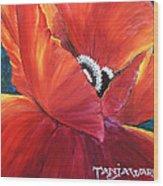 Scarlet Poppy Wood Print by Tanja Ware