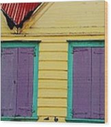 Colorful Doors In Antigua Wood Print