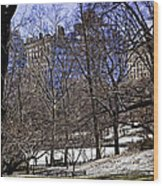 Scene From Central Park - Nyc Wood Print by Madeline Ellis