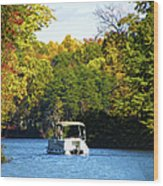 Scenic Autumn Viewing Wood Print