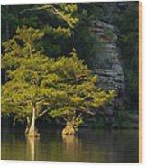 Scenic Beavers Bend Wood Print
