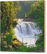 Scenic Falls Wood Print