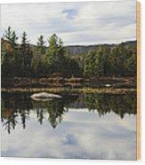 Scenic Lily Pond Wood Print