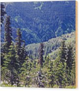 Scenic Mountain Valley Wood Print