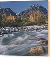 Scenic Of Granite Creek In Autumn Sc Wood Print by Calvin Hall