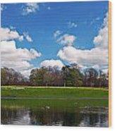 Scenic Park Lake In Spring Time Wood Print