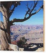 Scenic Survival Wood Print