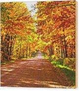 Scenic Tour Wood Print