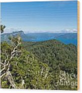 Scenic Urewera Np With Lake Waikaremoana In Nz Wood Print