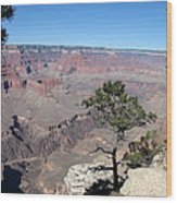 Scenic View - Grand Canyon Wood Print