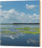 Scenic View Of A Lake Against Cloudy Wood Print