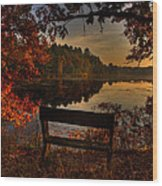 Scenic View Wood Print
