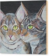 Scheming Cats Wood Print