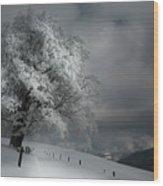 Schneeweg Wood Print