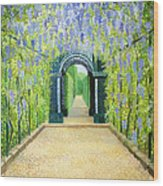 Schoenbrunn In Vienna The Palace Gardens Wood Print
