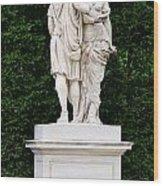 Schonbrunn Palace In Vienna Austria - Garden Statue Detail Wood Print