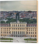 Schonbrunn Windows Wood Print by Viacheslav Savitskiy