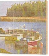 Schoodic Peninsula Maine Wood Print