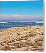 Schoodic Point 5862 Wood Print