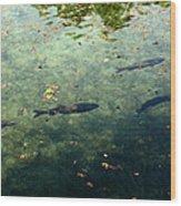 School Of Fish Wood Print