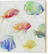 School Of Tropical Fish Wood Print