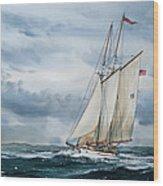 Schooner Adventuress Wood Print by James Williamson
