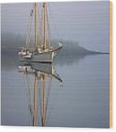 Schooner American Eagle At Anchor  Wood Print