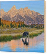 Schwabacher Morning Light  Wood Print