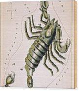 Scorpio Constellation  1825 Wood Print