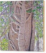 Scorpion Tree Wood Print