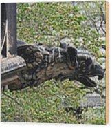 Scott Monument Gargoyle Wood Print
