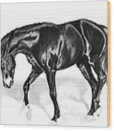 Scottish Gold - Registered Thoroughbred Wood Print