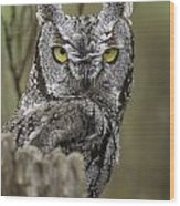 Screen Owl Wood Print
