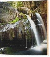Screw Auger Falls 5281 Wood Print