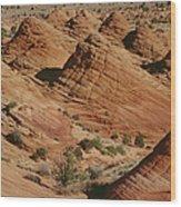 Sculpted Colorado Sandstone Paria Canyon Wood Print