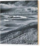 Land Shapes 27 Wood Print