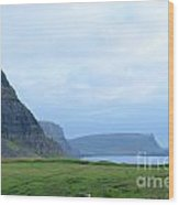 Sea Cliffs At Neist Point In Scotland Wood Print