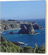 Sea Coast Of Northern California Wood Print
