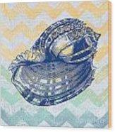 Sea Shell-c Wood Print